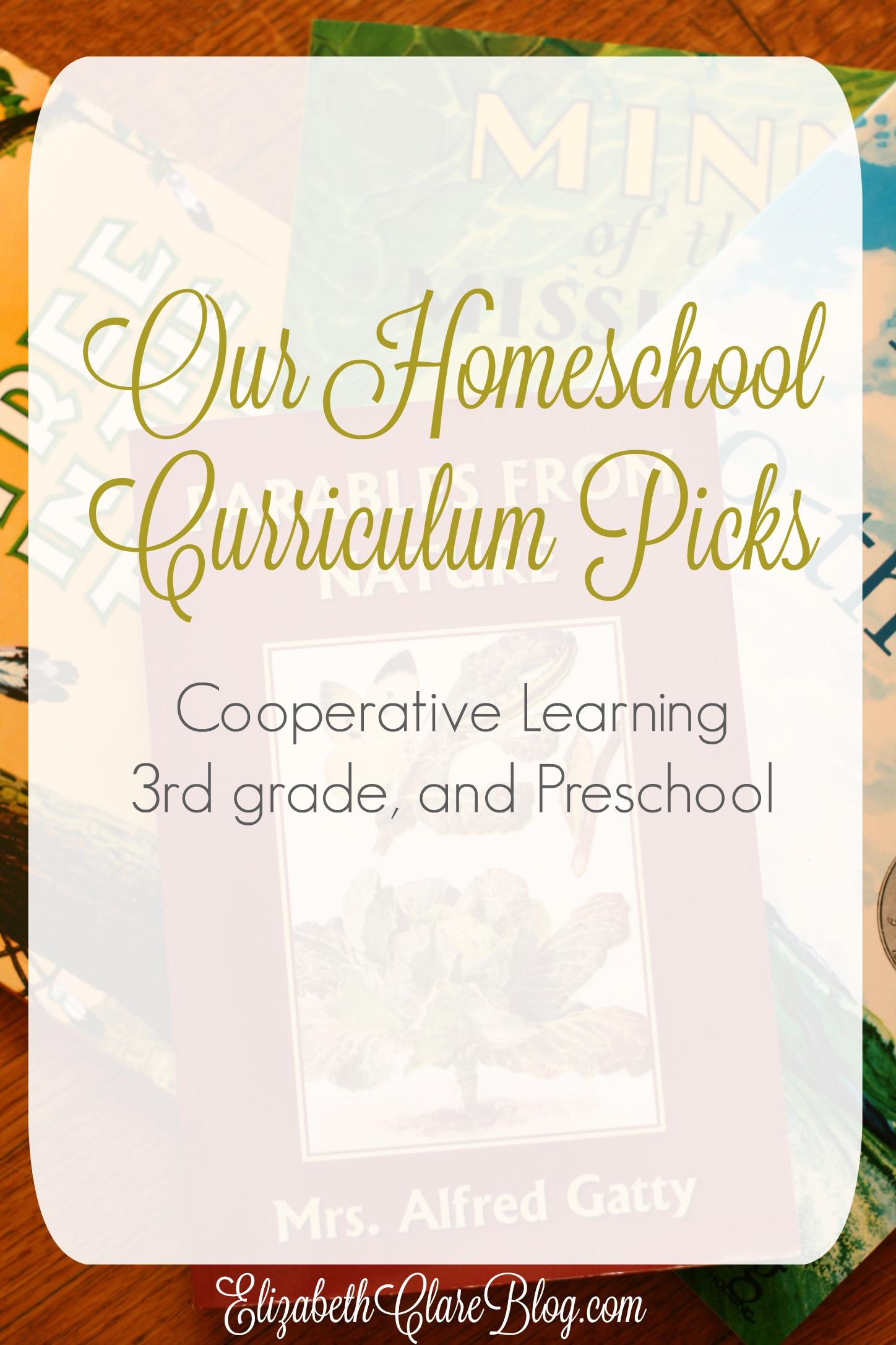 2015-16 Homeschool Curriculum Plan