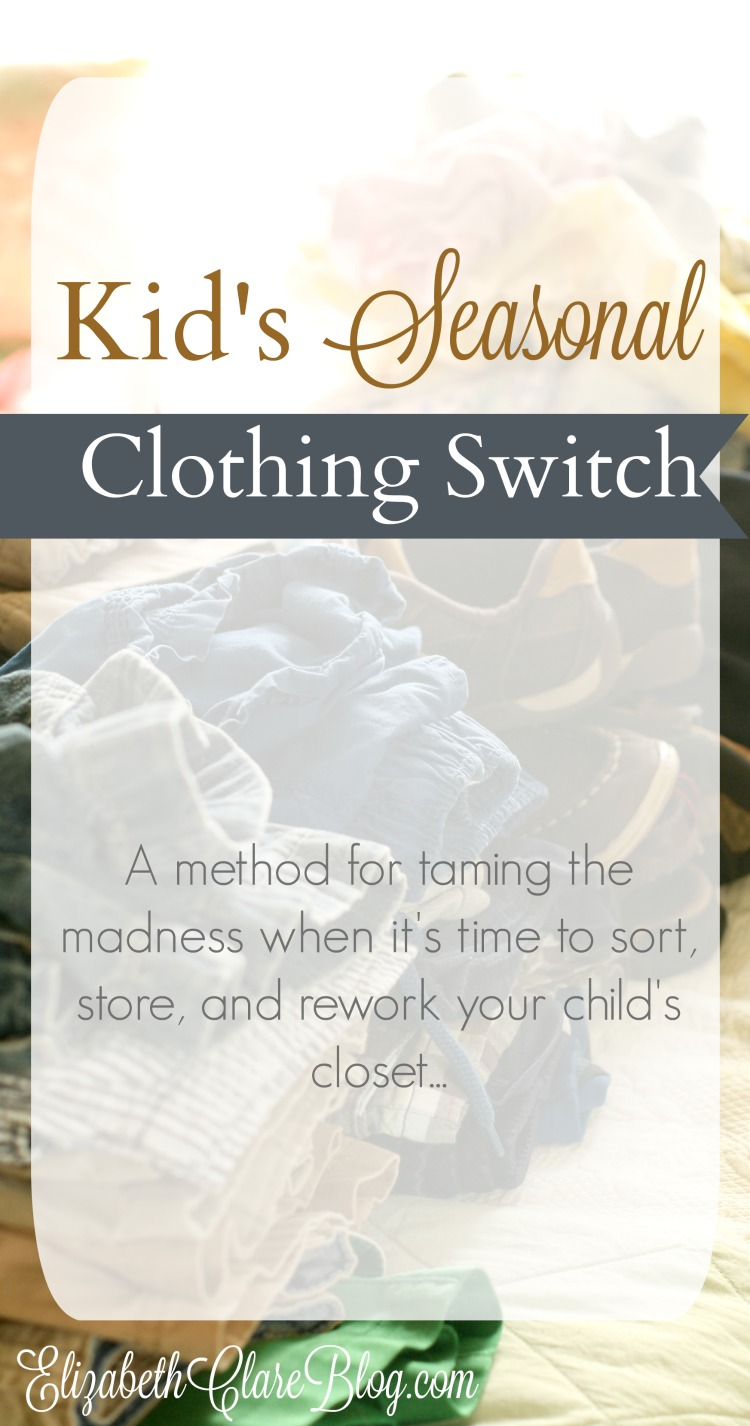 Switch clothing store website
