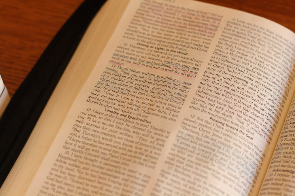 how to read the catholic bible daily