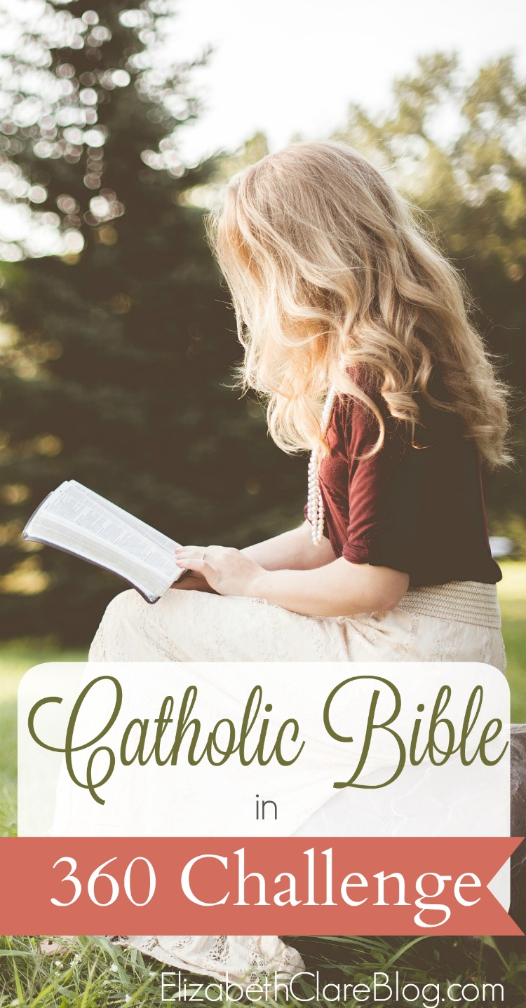Bible In 360 Challenge The Catholic Bible In A Year Elizabeth Clare