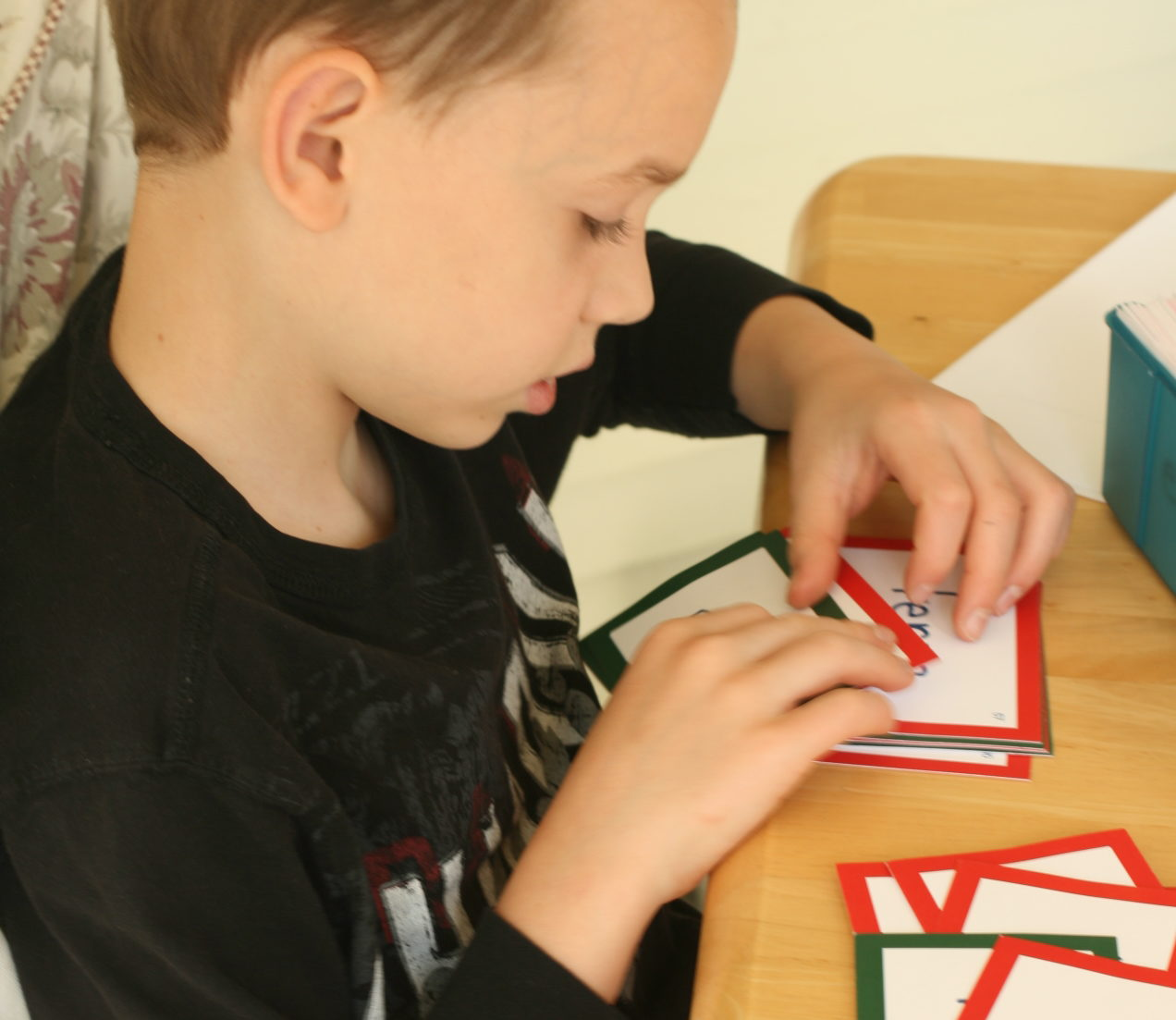 My 10 Criteria for Choosing Homeschool Curriculum