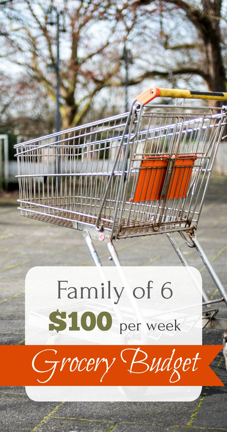 No coupons, real food, family of 6 grocery budget. Save money shopping!