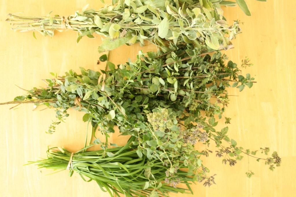 herbs garden diy drying homemaking